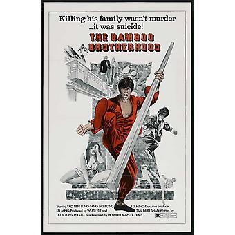 Anima Avenger Movie Poster stampa (27 x 40)