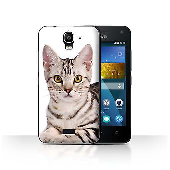 STUFF4 Tilfelle/Cover for Huawei Y3/Y360/American Shorthair/Cat raser