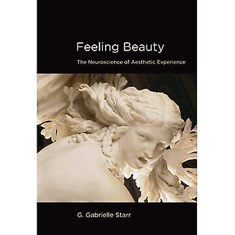 Gefühl Schönheit: Die Neurowissenschaften der ästhetischen Erfahrung