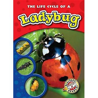 The Life Cycle of a Ladybug by Colleen Sexton - 9781600145254 Book