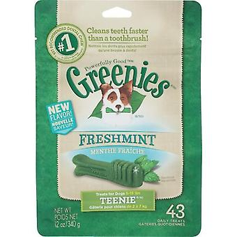 Greenies Teenies MINT Treat Pack 340gm