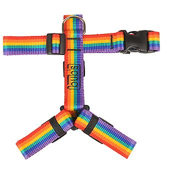 Bub's Arnes Not Pull Grande Rainbow (Dogs , Collars, Leads and Harnesses , Harnesses)