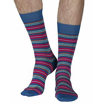Macacos men's cotton lisle dress socks in turquoise | By Pantherella
