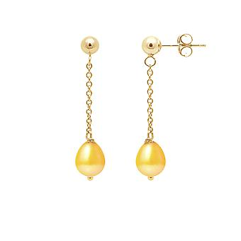 Earrings ears Pendantes pearls of Culture gold and yellow gold 750/1000