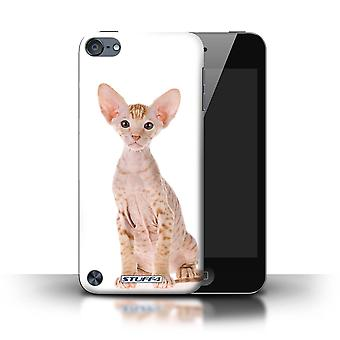 STUFF4 Phone Case / Cover for Apple iPod Touch 5 (5th Generation) / Peterbald Design / Cat Breeds Collection