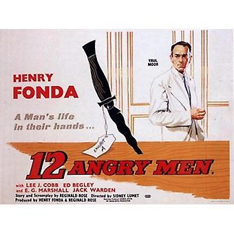 12 Angry Men Movie Poster (17 x 11)