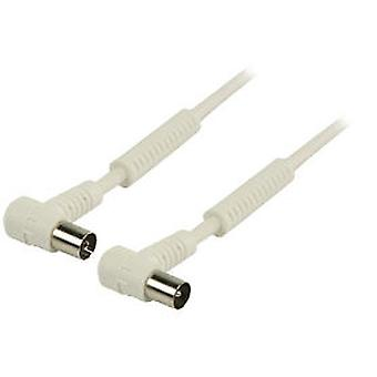 Valueline Coaxial Cable Antenna 100 Db Male and Female In Angle 1 m white