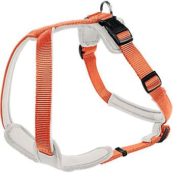 Hunter Harness Neopren Orange and Cream (Dogs , Collars, Leads and Harnesses , Harnesses)