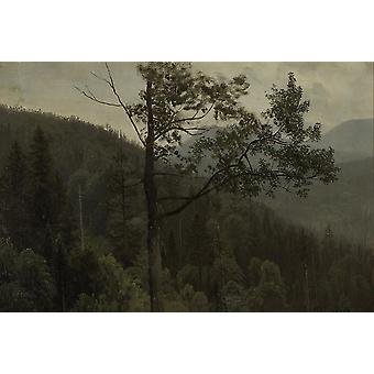 Albert Bierstadt - Tree covered mountains Poster Print Giclee