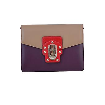Dolce E Gabbana ladies BB6310AB8958R163 multicolour leather clutch