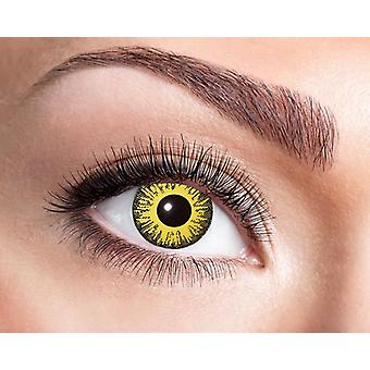 Sunflower sunflower sunshine contact lens