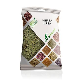 Soria Natural Lemon Verbena (Herbalist's , Plants)