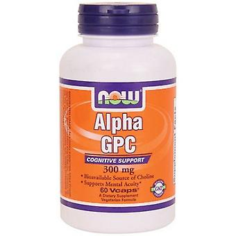 Now Foods Alpha GPC 300 mg 60 Capsules