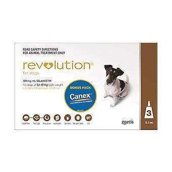 Revolution Brown 3 Pack Plus Canex
