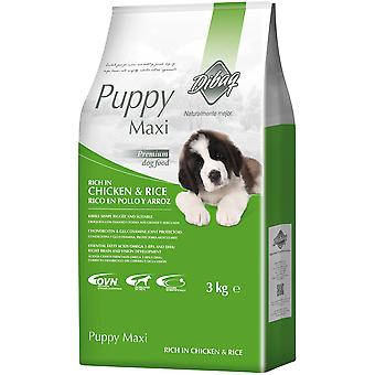 Dibaq Dnm Puppy Maxi  (Dogs , Dog Food , Dry Food)