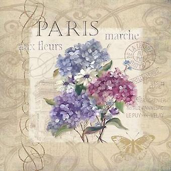 Paris Flower Market Poster Print by Carol Robinson (24 x 24)