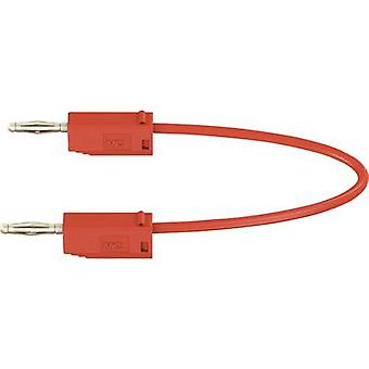 Stäubli LK205 Test lead [Banana jack 2 mm - Banana jack 2 mm] 0.3 m Red