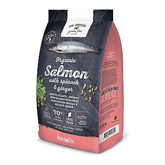 Rossi mulini andare nativo salmone/spinaci/zenzero grano gratuito 4kg alimento di cane asciutto