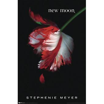 Twilight new moon poster U.S. book cover Stephenie Meyer