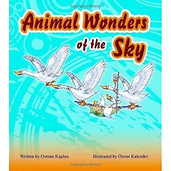 Animal Wonders of the Sky (Amazing Animals)