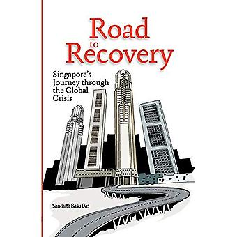 Road to Recovery: Singapore's Journey Through the Global Crisis