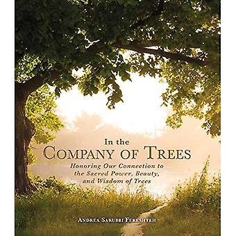 En compagnie d'arbres: honorer notre lien avec le pouvoir sacré, la beauté et la sagesse des arbres
