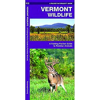 Faune de Vermont : Une Introduction aux espèces familières (poche naturaliste - Waterford Press)