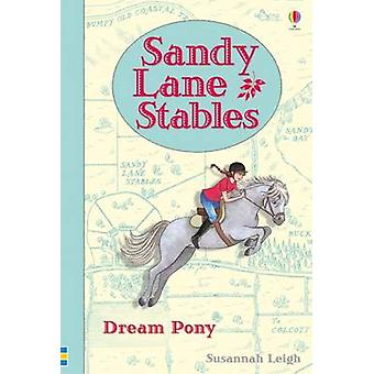 Sandy Lane Stables  Dream Pony by Michelle Bates