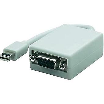 VGA / DisplayPort-adapteren [1 x Mini DisplayPort plug - 1 x VGA socket] hvit Manhattan