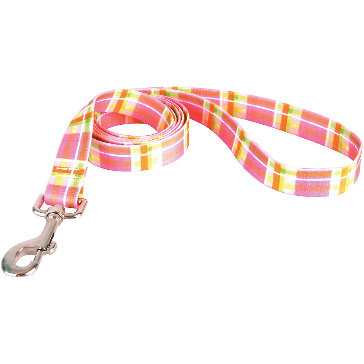 Yellow Dog Lead .75