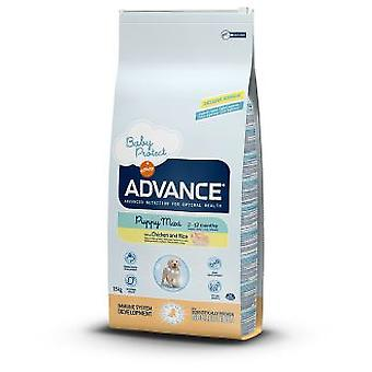Advance Puppy Protect Maxi Chicken & Rice (Dogs , Dog Food , Dry Food)