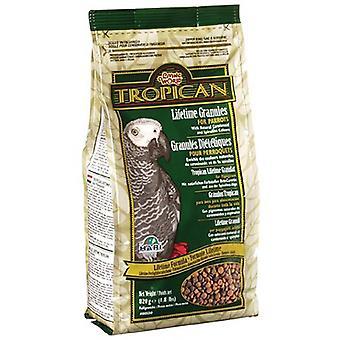 Tropican levetid papegøje granulat Mix/mad