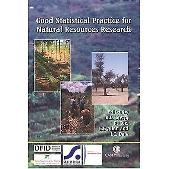 Bonnes pratiques statistiques pour la recherche de ressources naturelles