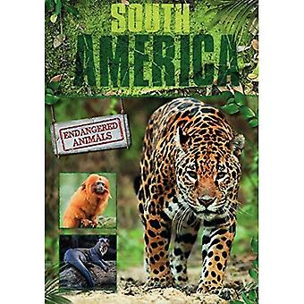 South America (Endangered Animals)