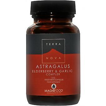 Terranova Astragalus, Elderberry & Garlic Complex Vegicaps 100 (T1780)