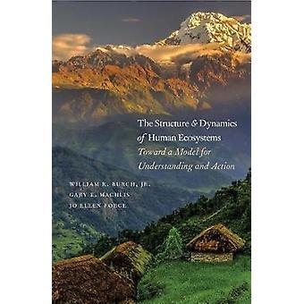 La struttura e la dinamica degli ecosistemi umani - verso un modello per Un