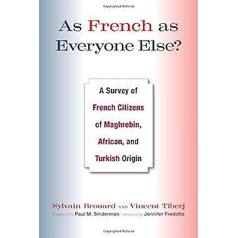 Tan francés como todos los demás: una encuesta de los ciudadanos franceses de origen africano y turco de especialización,
