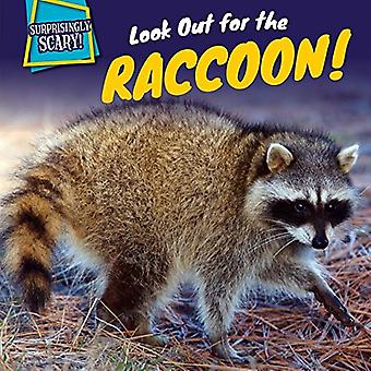 Look Out for the Raccoon! (Surprisingly Scary!)