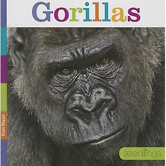 Gorillas by Kate Riggs - 9781608184545 Book