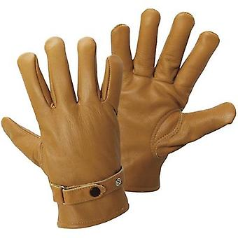 Griffy 1607 Leather Gloves