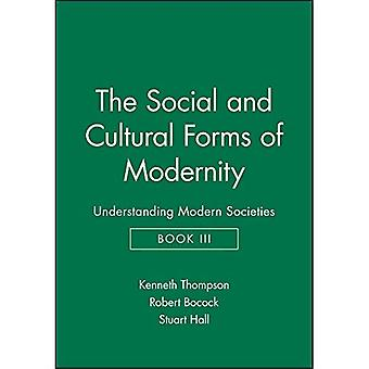 The Social and Cultural Forms of Modernity (Understanding Modern Societies)