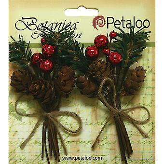 Botanica Holiday Pine Picks 2/Pkg-W/Cones & Berries P1146000