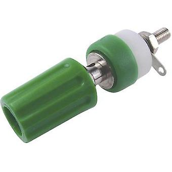 Pole terminal Green 15 A Cliff CL1508 1 pc(s)