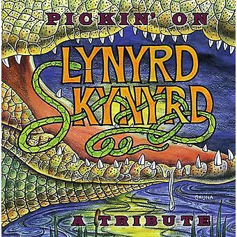 Pickin' on Lynyrd Skynyrd - Pickin' on Lynyrd Skynyrd [CD] USA import