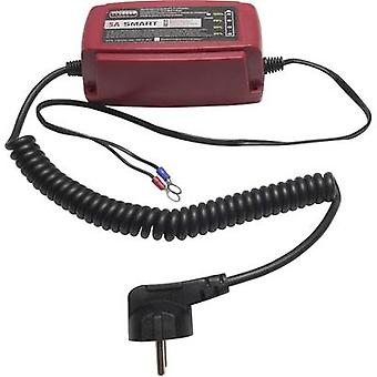 Automatic charger, Charger Profi Power 2913302 12 V