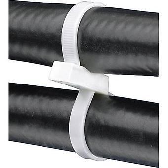 Panduit PLB4S-C PLB4S-C Cable tie 376 mm Ecru Double head, Eyelet 1 pc(s)