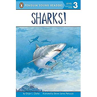 Sharks!: All Aboard Science Reader Station Stop 2 (All Aboard Science Reader: Level 1)
