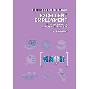 Excellent Employment: Hiring the Best People to Help Your Business Grow (Business on a Shoestring): Hiring the Best People to Help Your Business Grow (Business on a Shoestring)