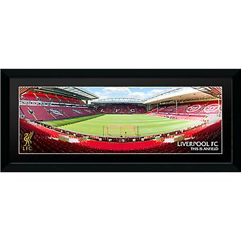 Liverpool Anfield indrammet Collector Print 75x30cm