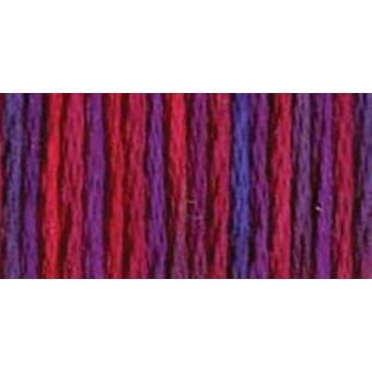 DMC Color Variationen sechs Strand Stickerei Zahnseide 8,7 Yards gemischte Beeren 417F 4212